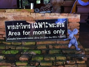 This one stayed behind....in Thailand...