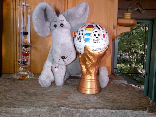 Me and my World Cup trophy ball…..
